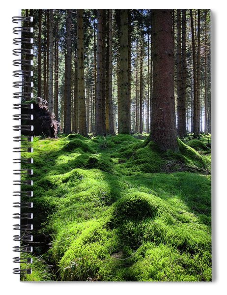 Forest Of Verdacy Spiral Notebook