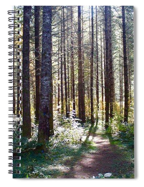 Forest Stroll Spiral Notebook
