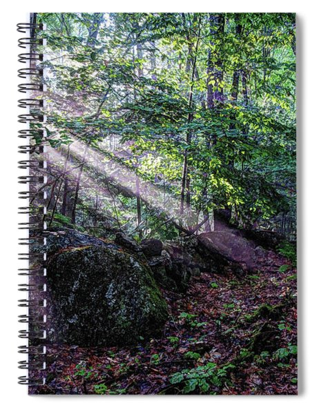 Forest Sunbeams Spiral Notebook