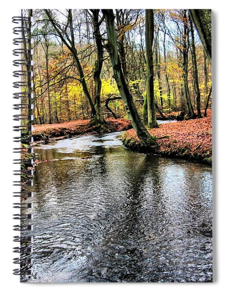 Forrest In The Deep Spiral Notebook