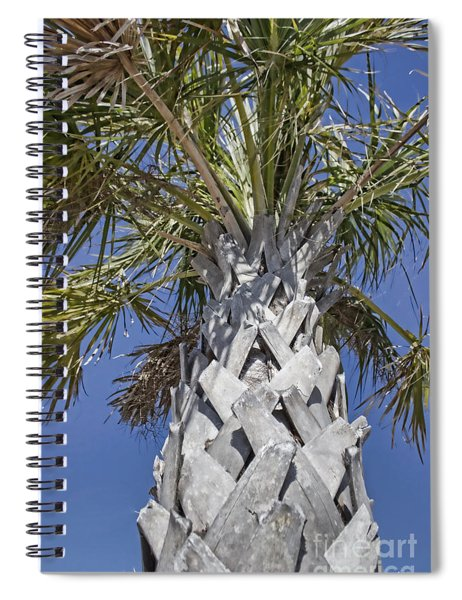 Fortified Foundation Palm Spiral Notebook