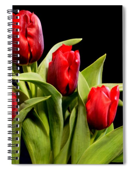 Four Tulips Spiral Notebook