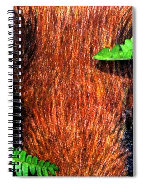 Fox In Hiding Spiral Notebook