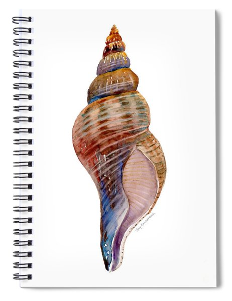 Fox Shell Spiral Notebook by Amy Kirkpatrick