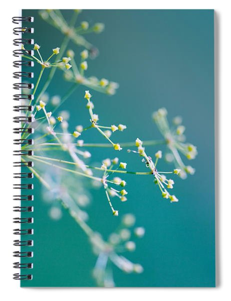 Fragile Dill Umbels Spiral Notebook
