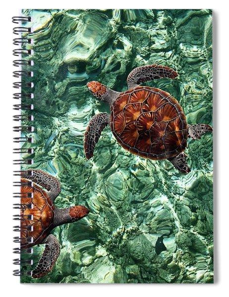 Fragile Underwater World. Sea Turtles In A Crystal Water. Maldives Spiral Notebook