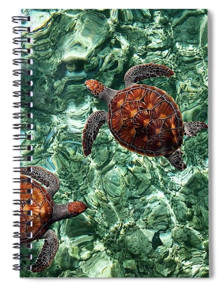 Fragile Underwater World. Sea Turtles In A Crystal Water. Maldives Spiral Notebook