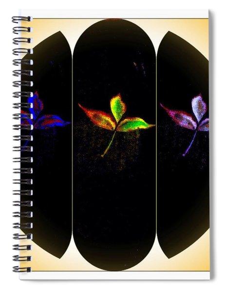 Framing Autumn Spiral Notebook