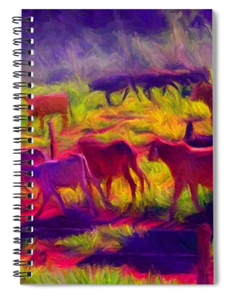 Franca Cattle 1 Spiral Notebook
