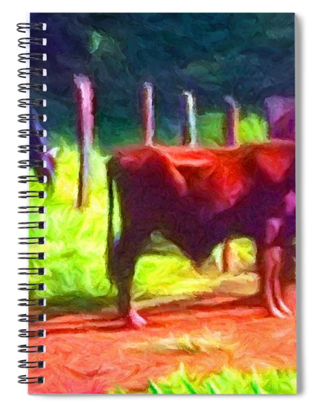 Franca Cattle 2 Spiral Notebook