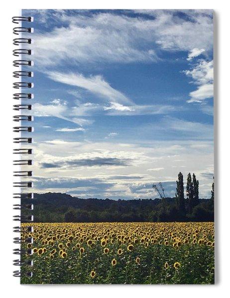 Sunflowers In Avignon Spiral Notebook