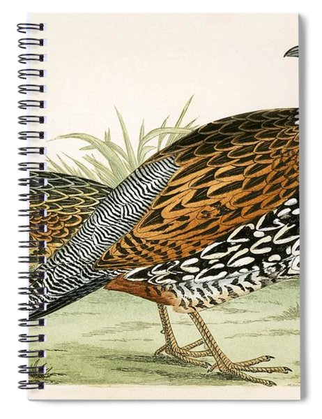 Francolin Spiral Notebook
