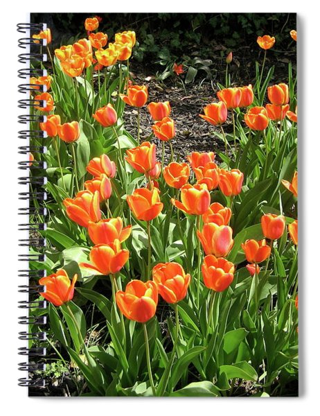 Spiral Notebook featuring the pyrography Fred's Garden by Michael Lucarelli