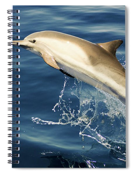 Free Jumper Spiral Notebook