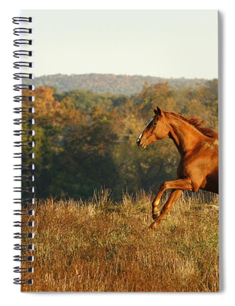 Freedom In The Late Afternoon Spiral Notebook