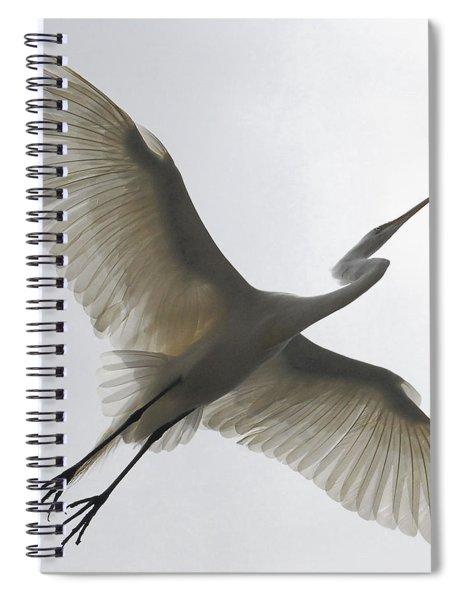 Freedom Of Flight Spiral Notebook