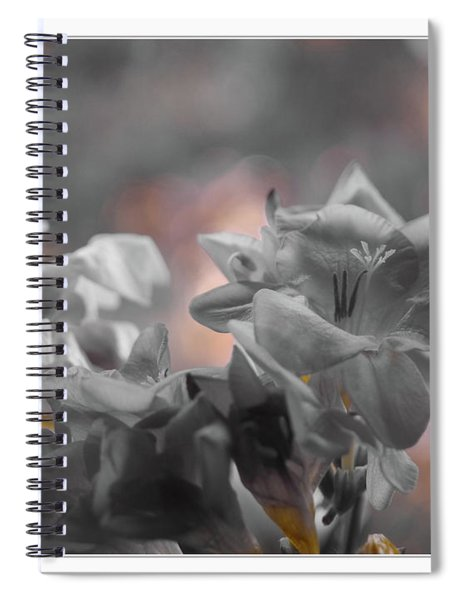 Freesia'a Without Colour Spiral Notebook