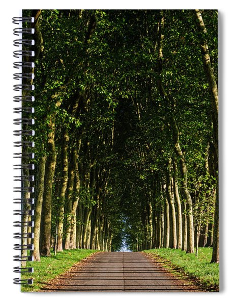 French Tree Lined Country Lane Spiral Notebook