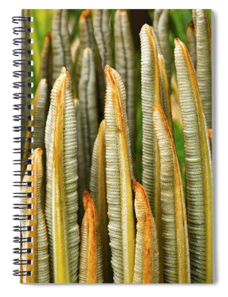 Fresh Fronds Spiral Notebook
