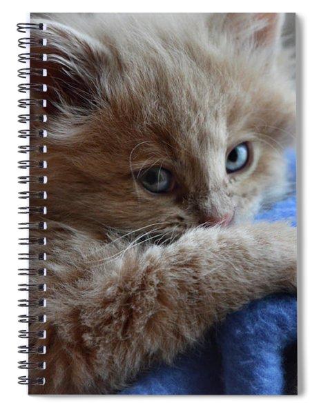 Freya #1 Spiral Notebook