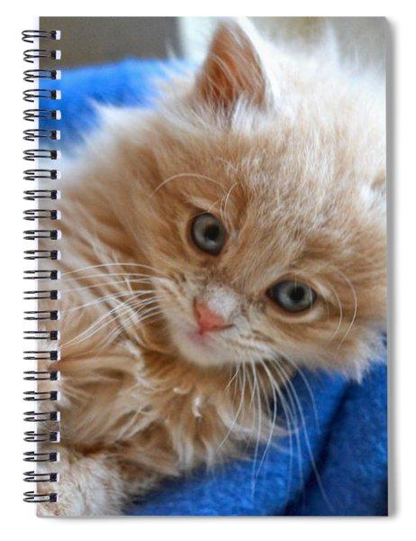 Freya #2 Spiral Notebook