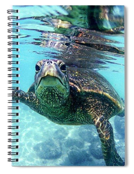 friendly Hawaiian sea turtle  Spiral Notebook