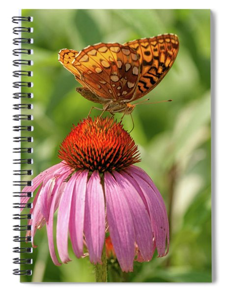 Fritillary And Cone Flower 2018-2 Spiral Notebook