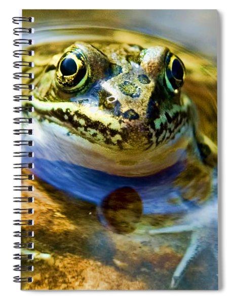 Frog In Pond Spiral Notebook