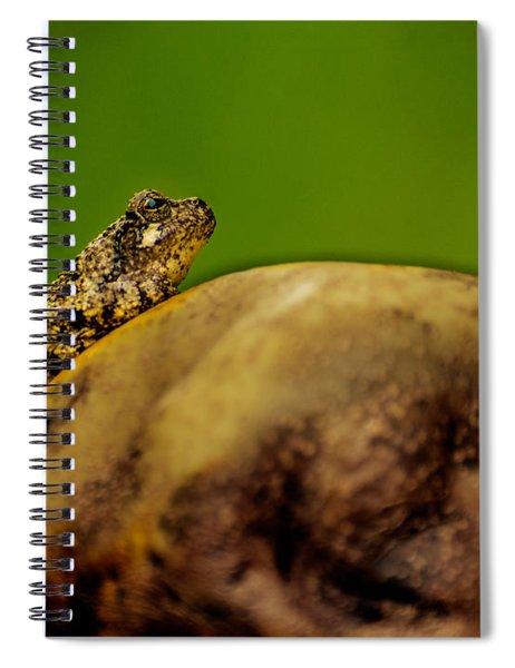 Frog Waits Spiral Notebook