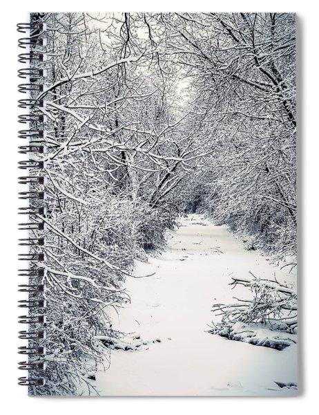 Frosted Feeder Spiral Notebook