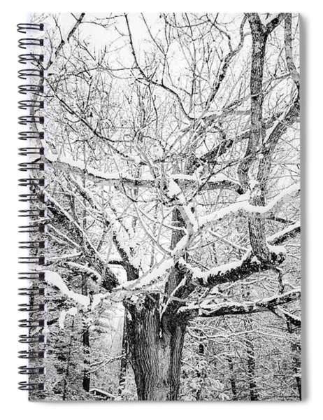 Frosted Spiral Notebook