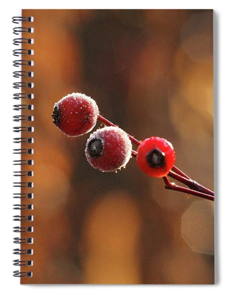 Frosted Rose Hips Spiral Notebook
