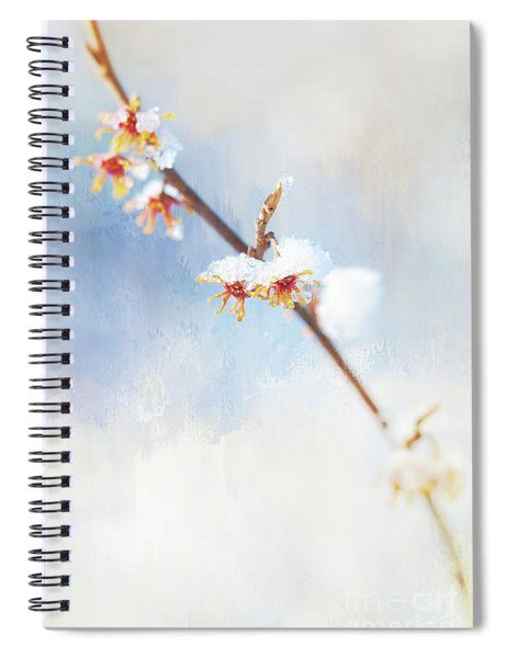 Frosted Witch Hazel Blossoms  Spiral Notebook