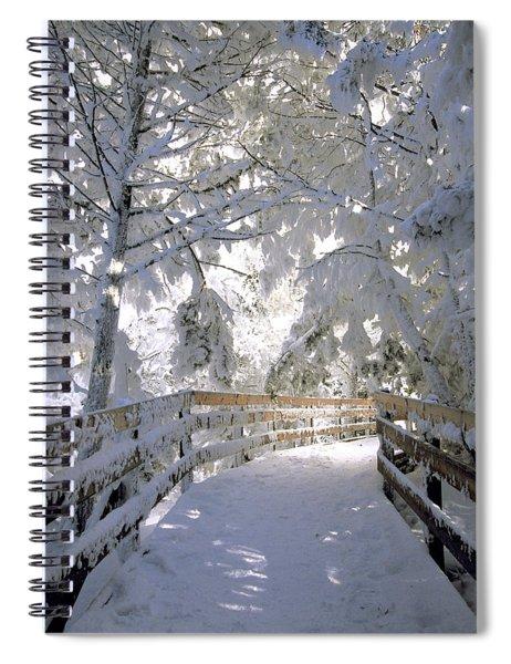 Frosty Boardwalk Spiral Notebook