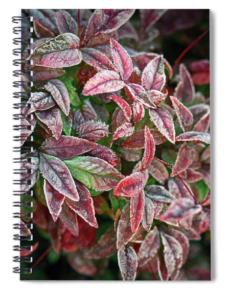 Frosty Spiral Notebook