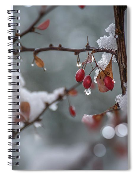It's Berry Cold Spiral Notebook