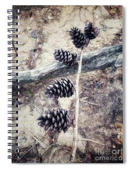 Fruit Of The Pine Spiral Notebook