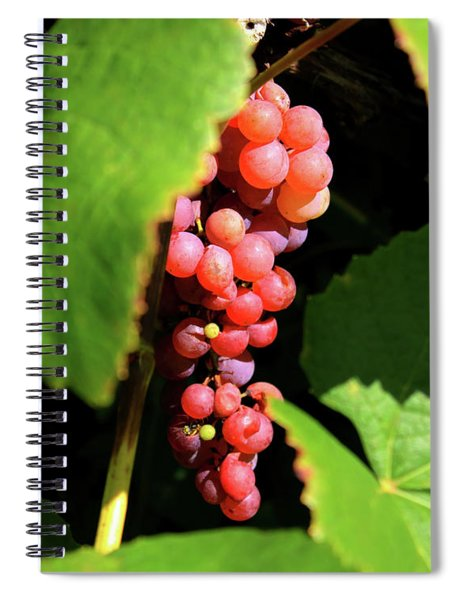 Fruit Of The Vine Spiral Notebook