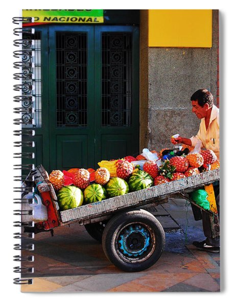 Spiral Notebook featuring the photograph Fruta Limpia by Skip Hunt