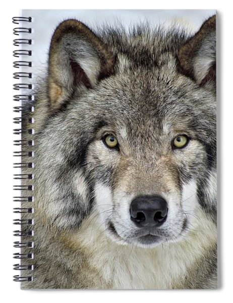 Full Attention  Spiral Notebook