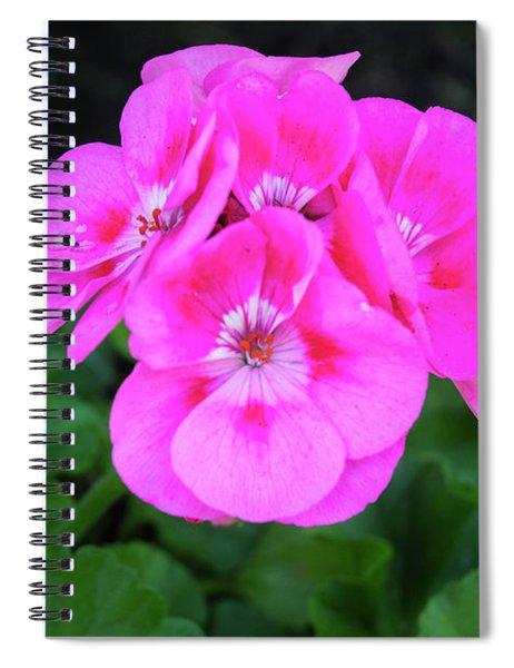 Full Bloom Geranium Spiral Notebook