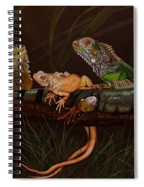Full House Spiral Notebook