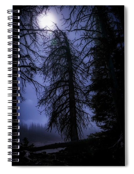 Full Moon In The Woods Spiral Notebook