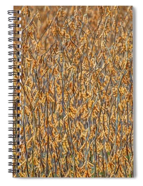 Full  Spiral Notebook