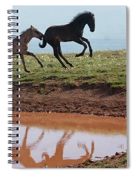 Fun In The Rockies- Wild Horse Foals Spiral Notebook