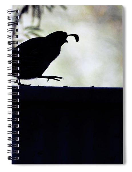 Gambel's Quail 6057-041818-1cr Spiral Notebook