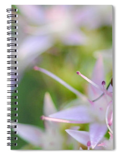 Garden Brunch Spiral Notebook