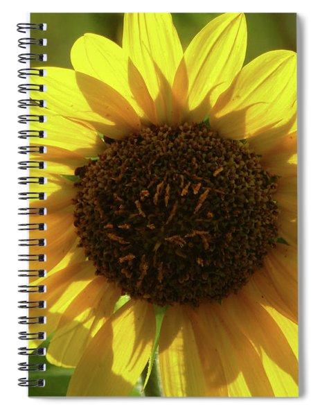 Garden Sunshine Spiral Notebook
