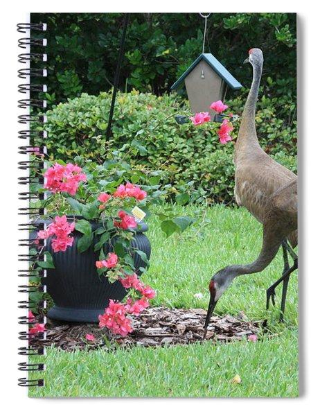 Garden Visitors Spiral Notebook
