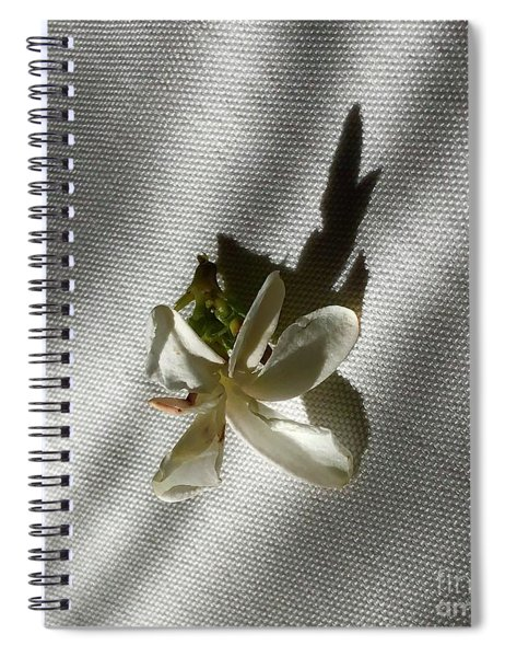 Gardenia On Tablecloths  Spiral Notebook